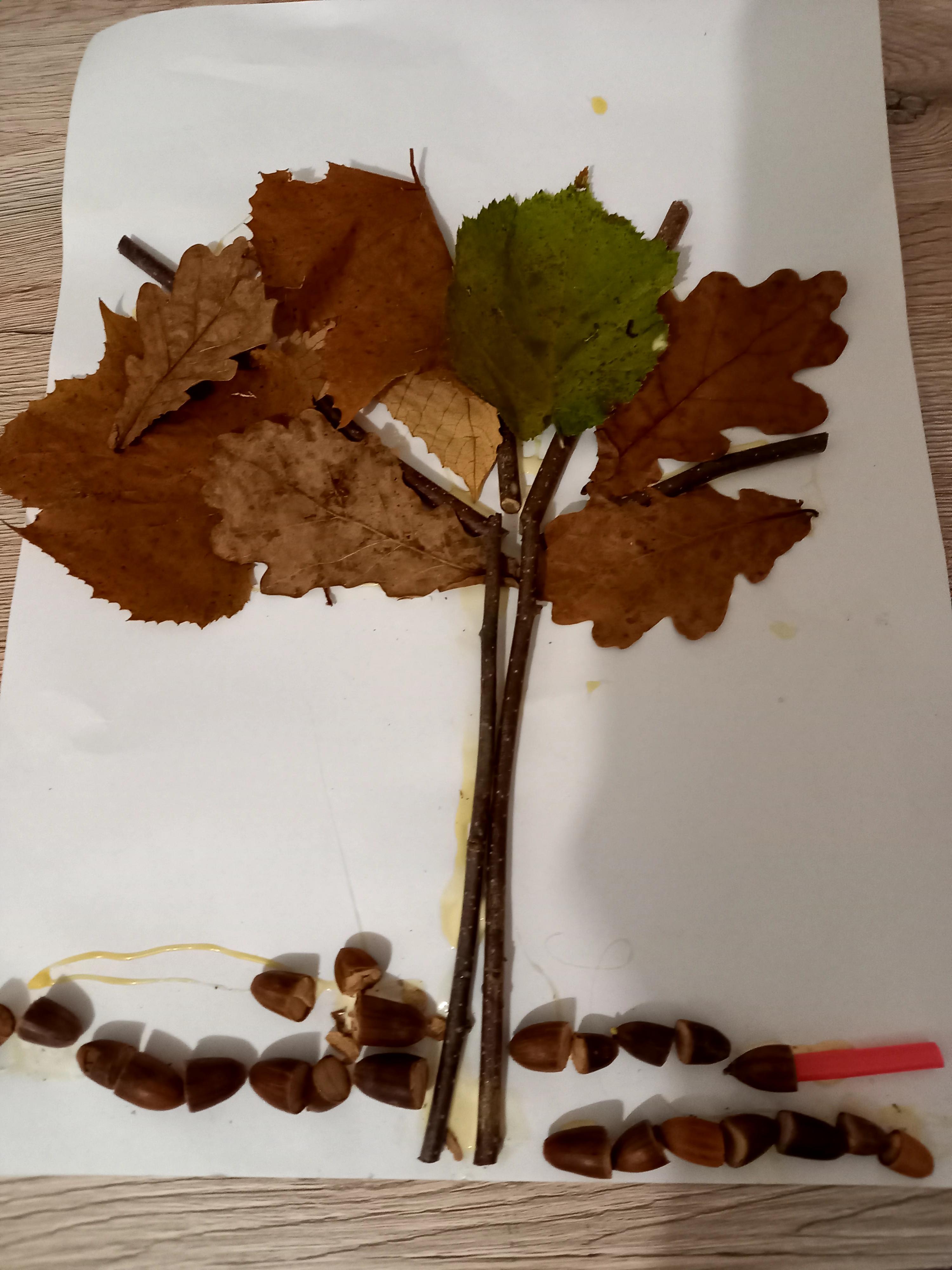dominik-jesen